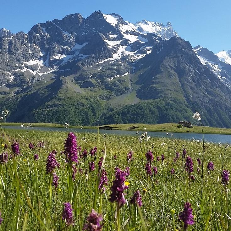 Lac du Pontet ©C. Mielle