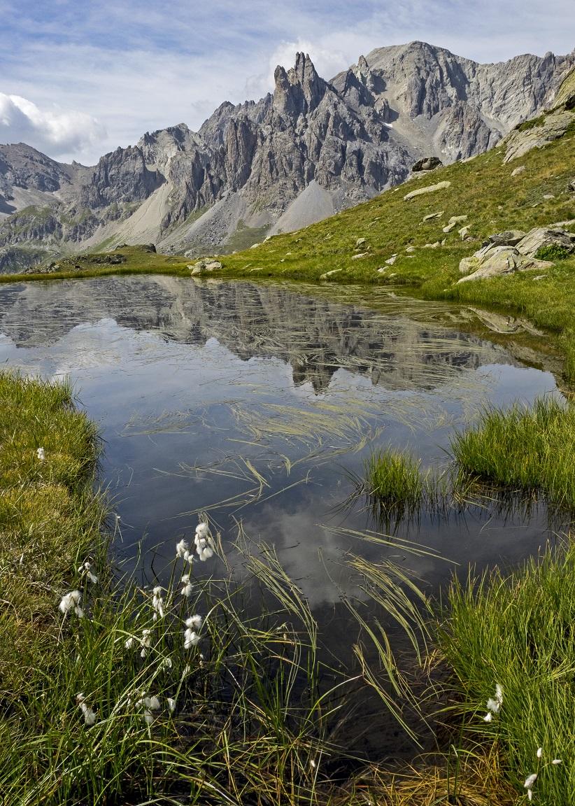 Marais vers Lacs Long et Rond ©MDucroux