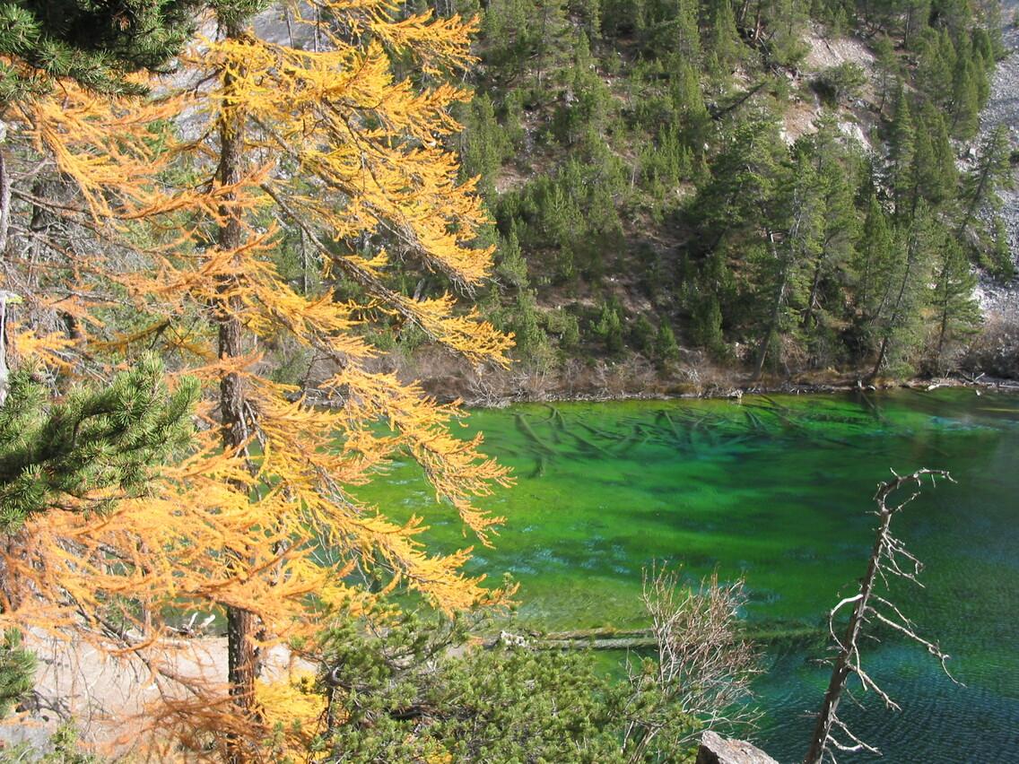 ©AHelas_automne au lac vert